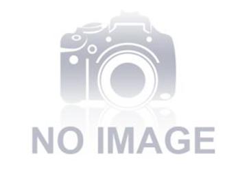 Chấn Lưu Sử Dụng Cho Bóng Đèn Tia Cực Tím 95-155W (Uv8)